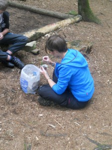 Art Workshops in the woods